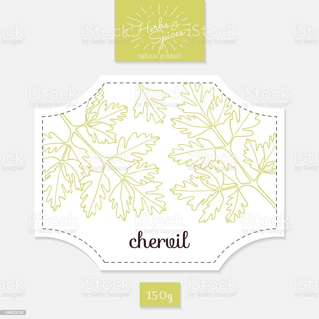 Product sticker with hand drawn chervil leaves. Spicy herbs packaging vector art illustration