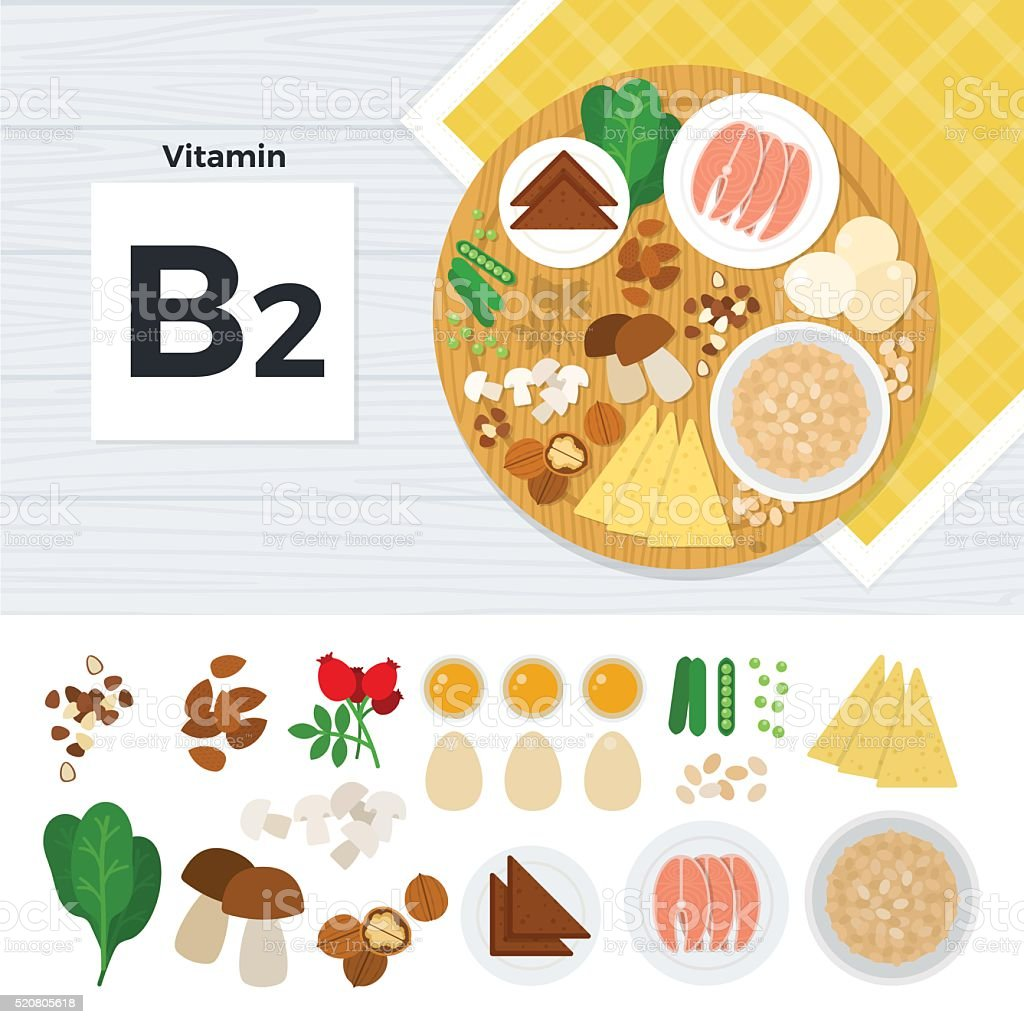 Products with vitamin B2 vector art illustration