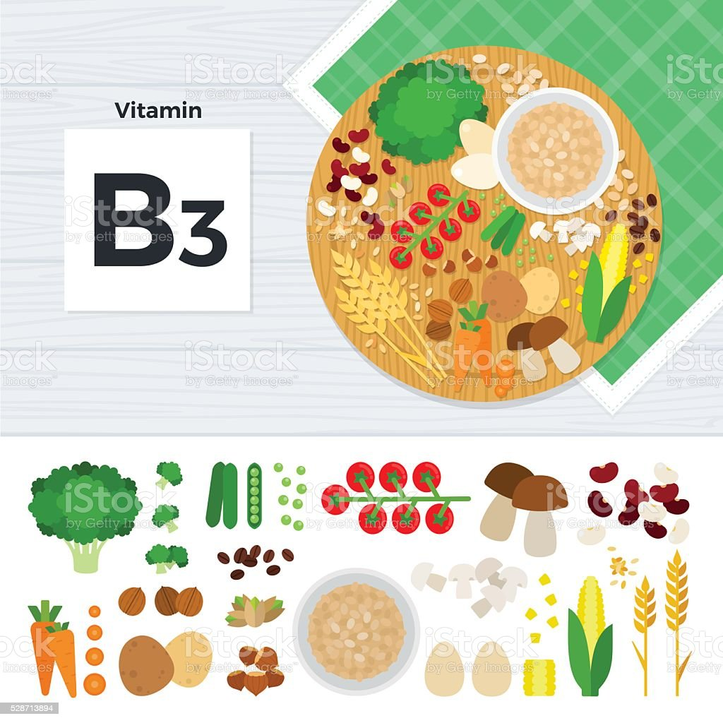Products with vitamin B3 vector art illustration