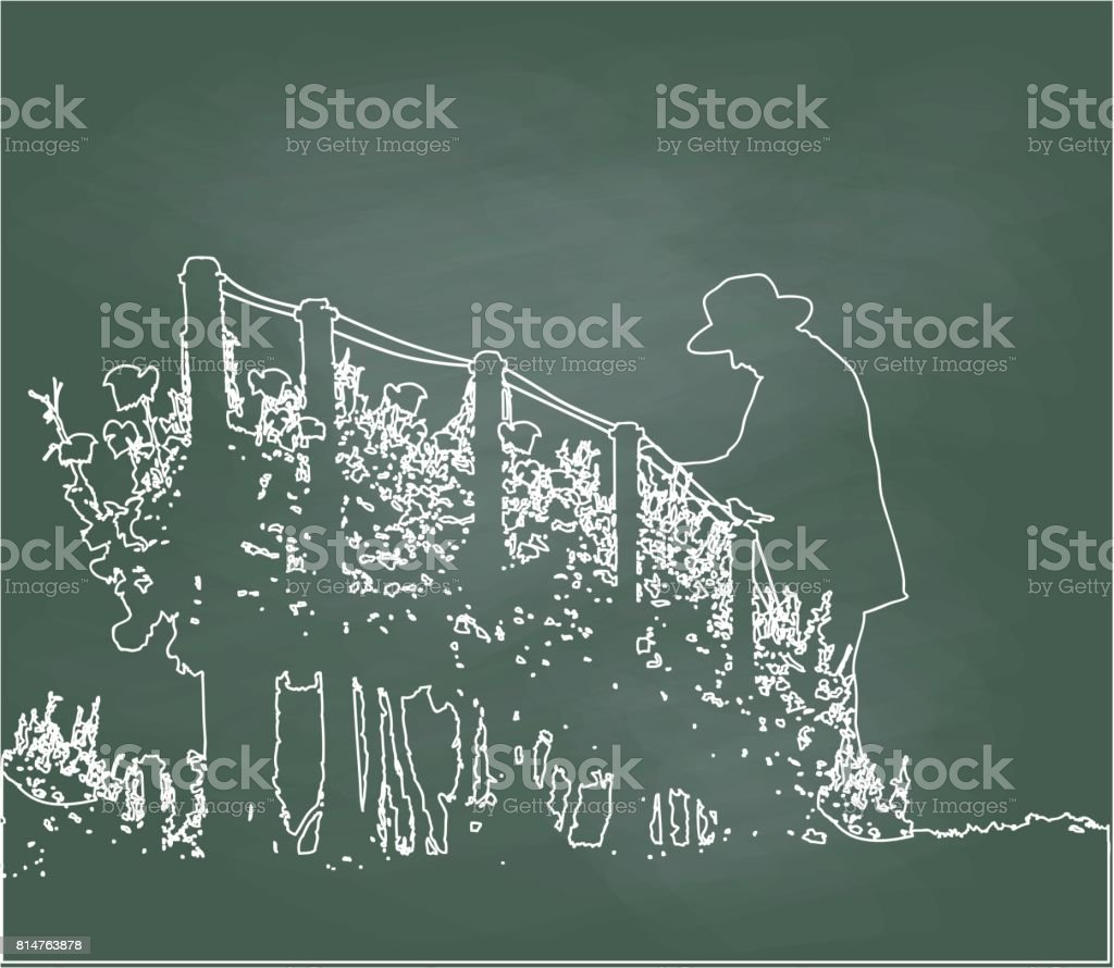 Pruning The Orchard vector art illustration