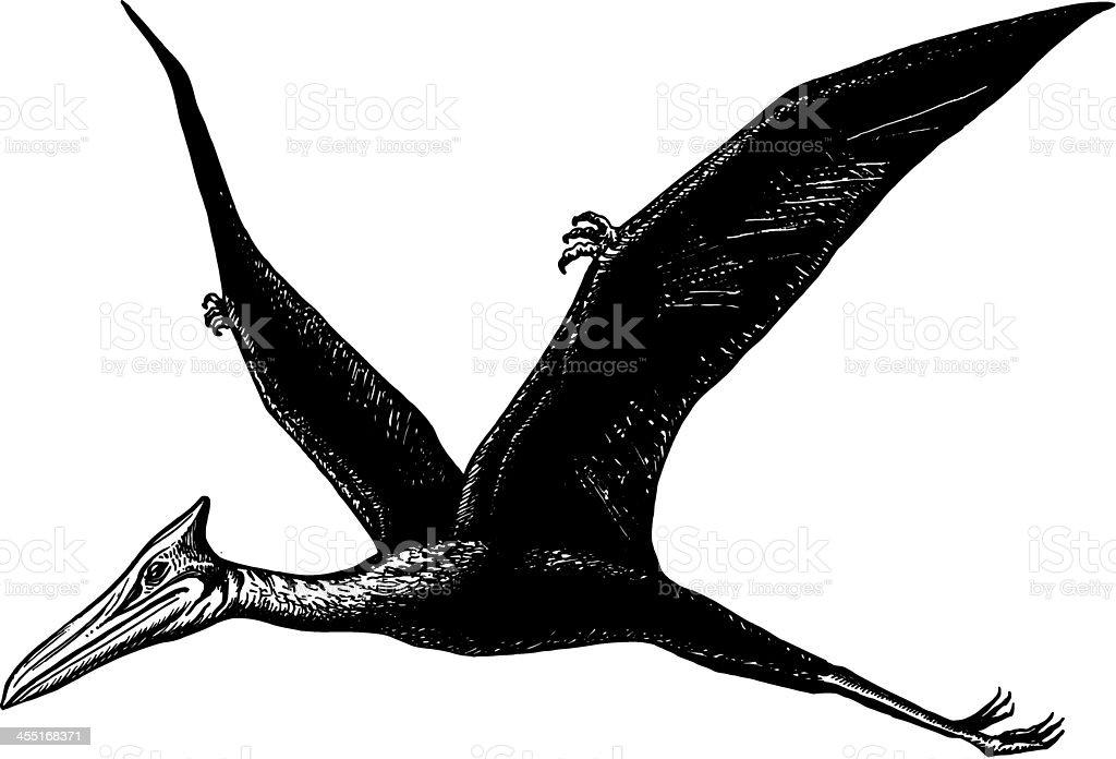 pterodactyl - Quetzalcoatl vector art illustration