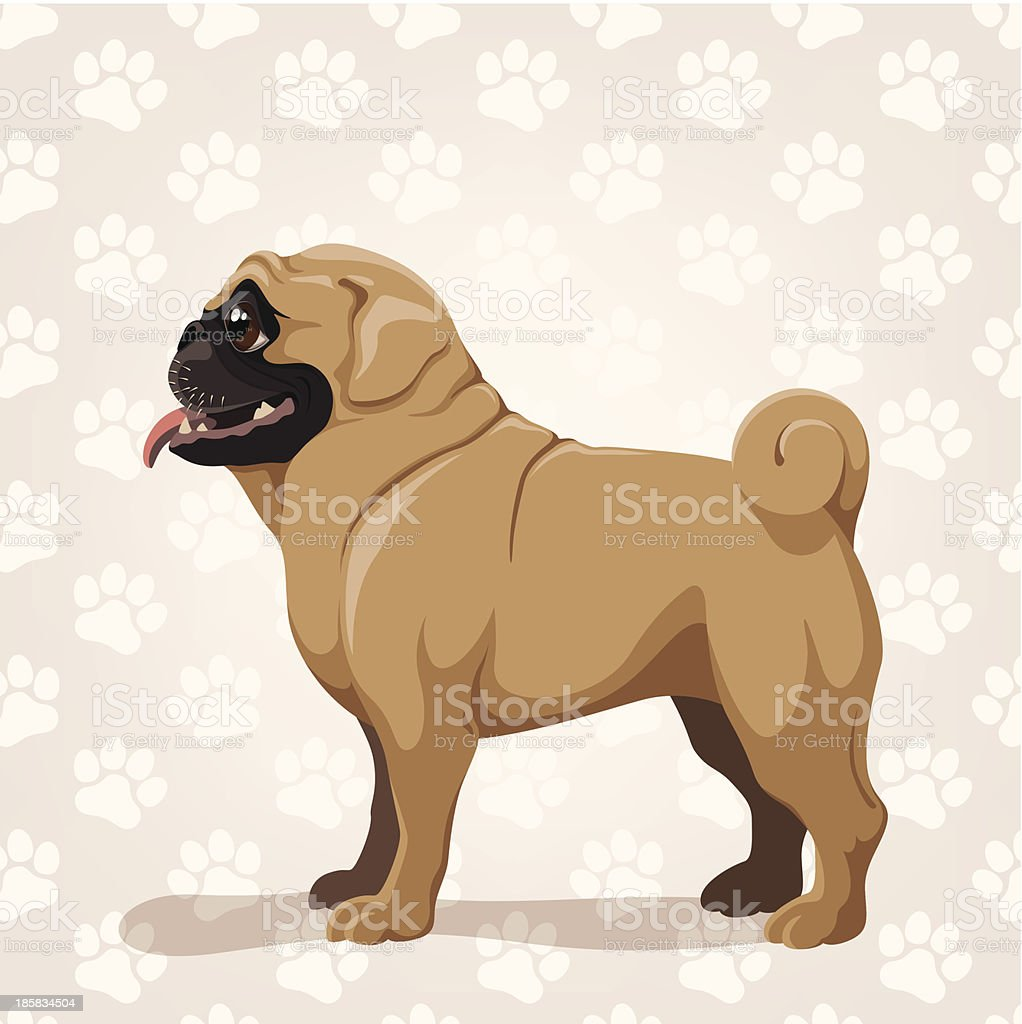 Pug royalty-free stock vector art