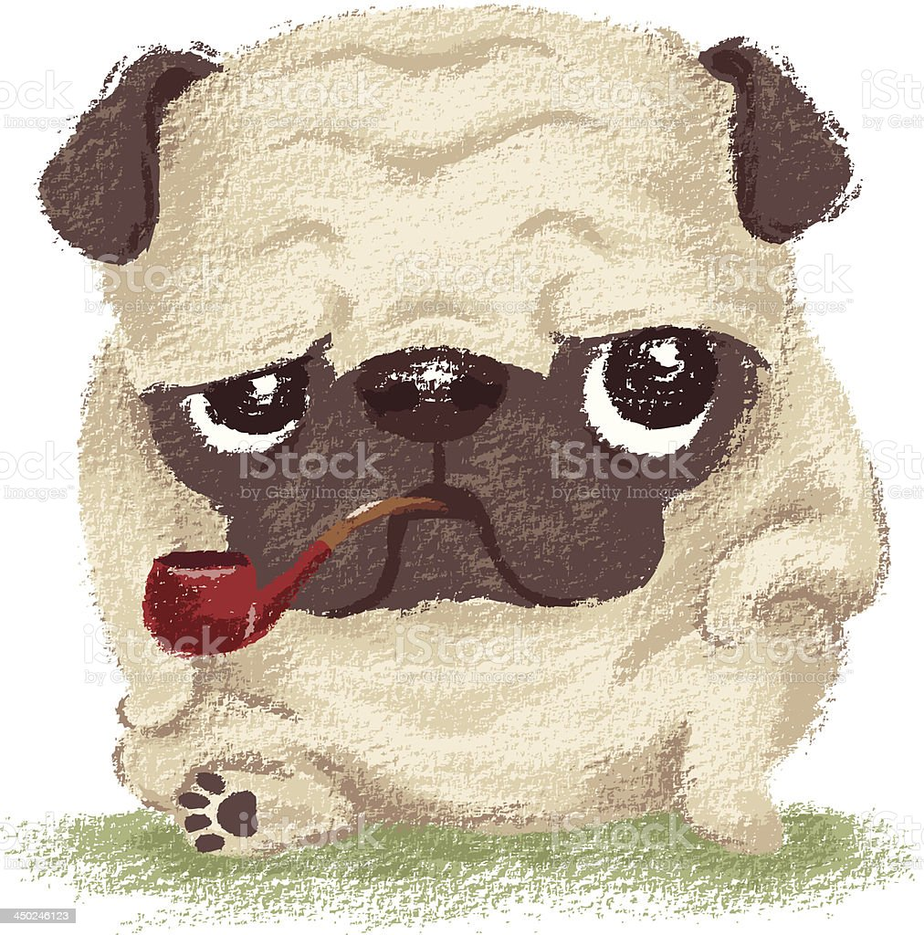 Pug which held the pipe in its mouth royalty-free stock vector art