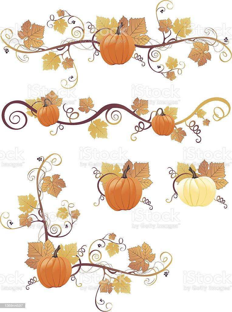 Pumpkin Design Elements vector art illustration