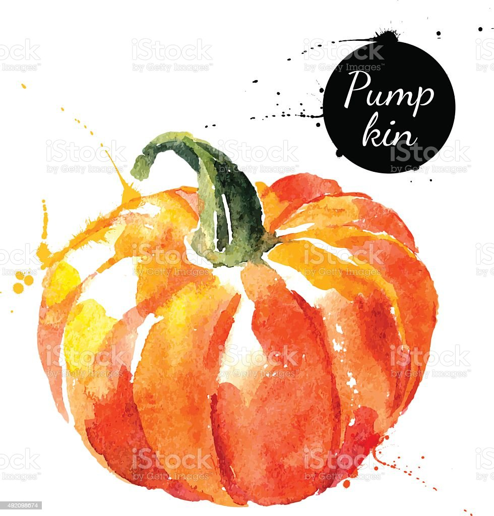 Pumpkin. Hand drawn watercolor painting on white background. Vec vector art illustration