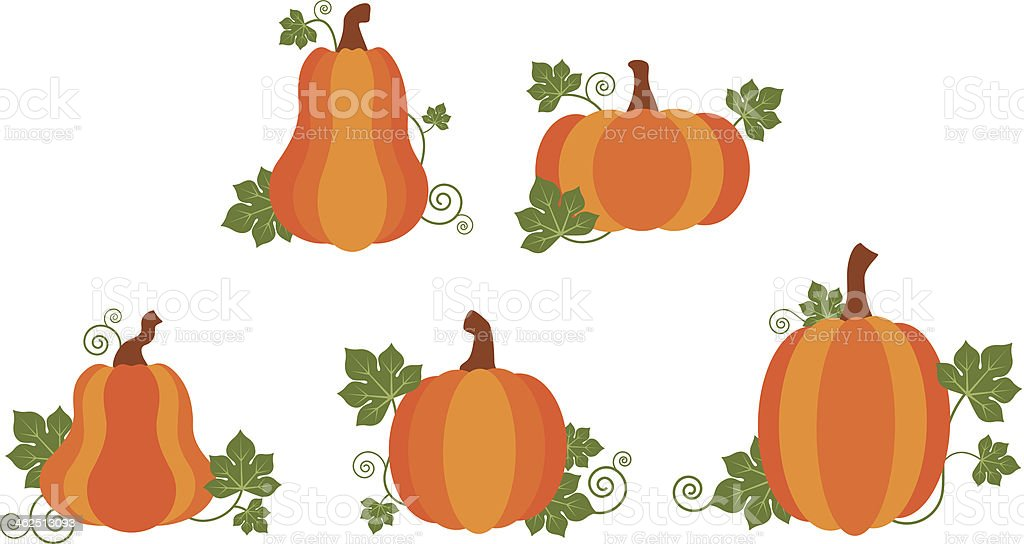 Pumpkin patch royalty-free stock vector art