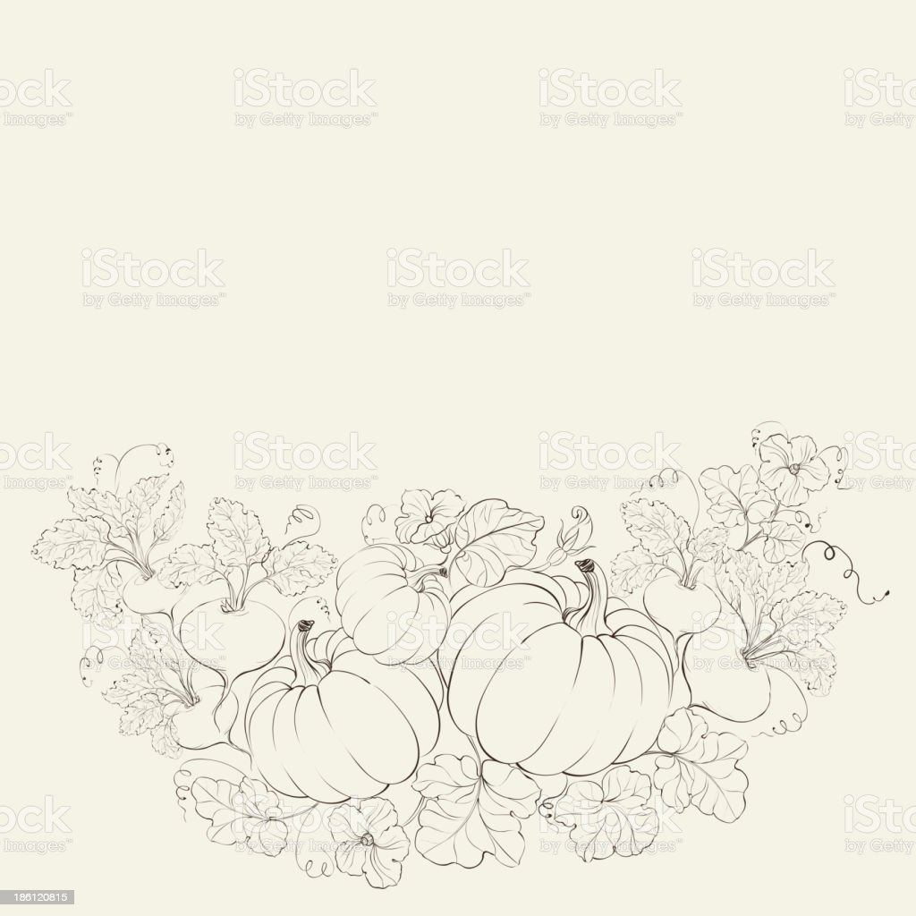 Pumpkins, Autumn harvest. royalty-free stock vector art