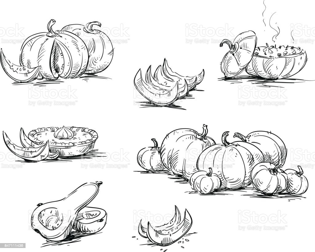 Pumpkins, dishes with pumpkin. vector art illustration