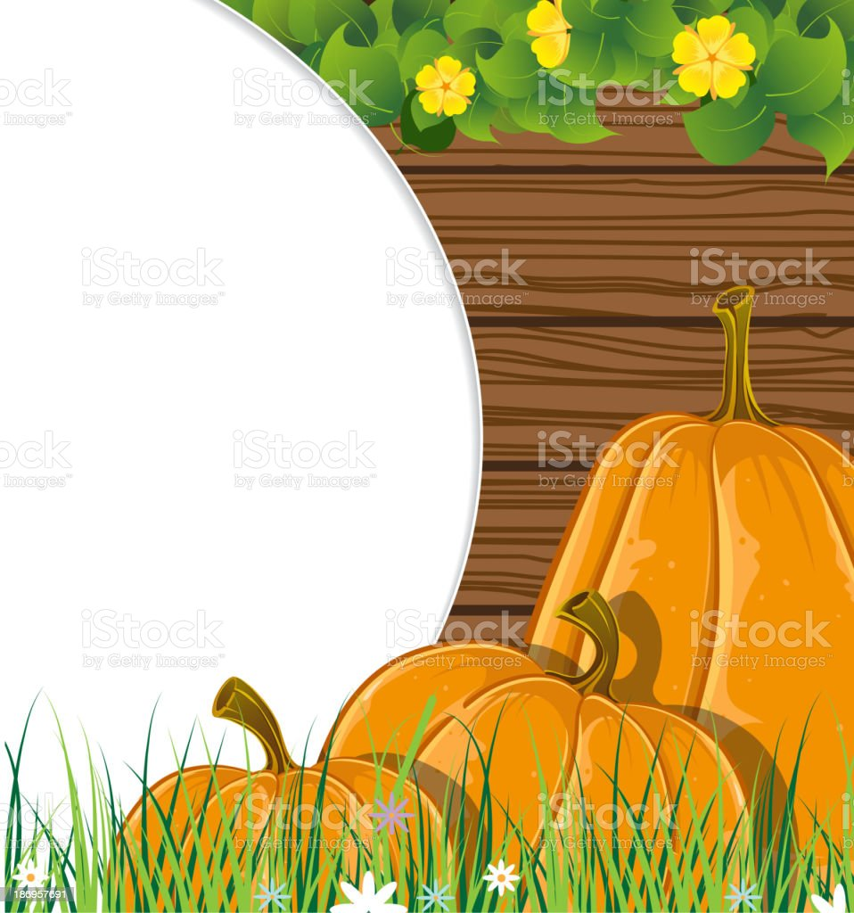 Pumpkins on the wooden background royalty-free stock vector art