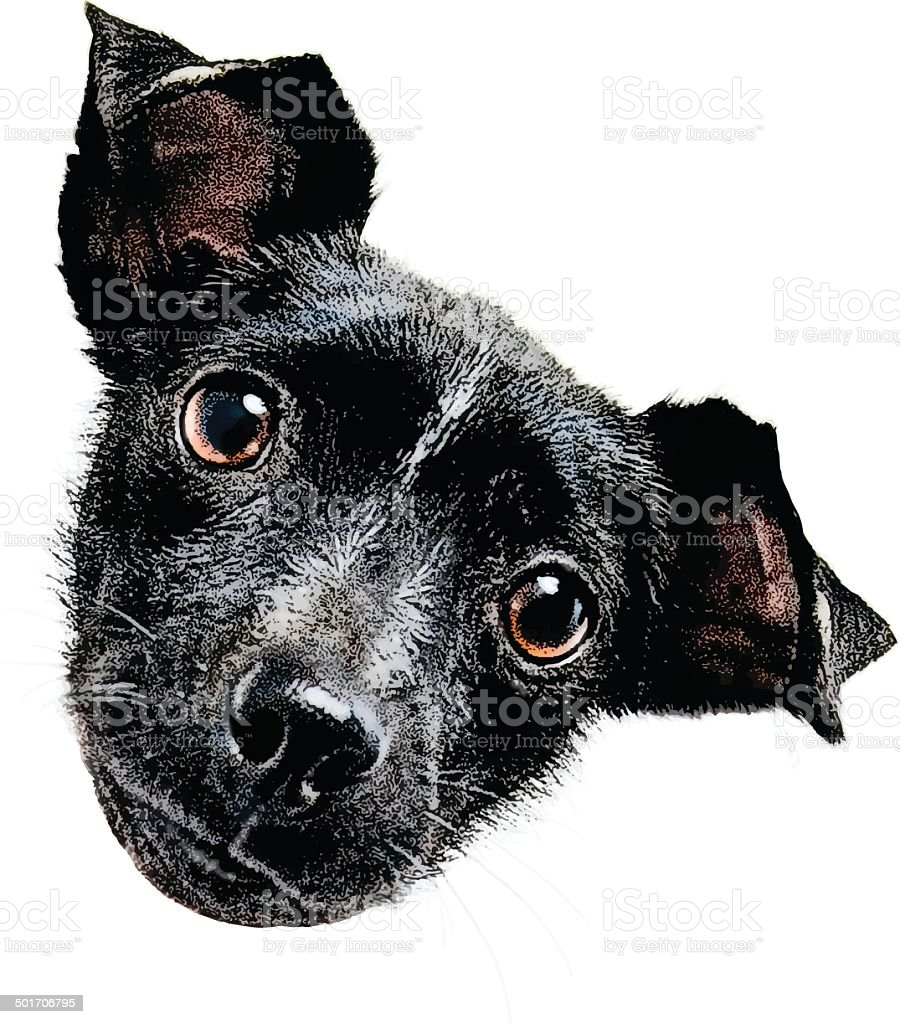 Puppy Head Isolated On White vector art illustration