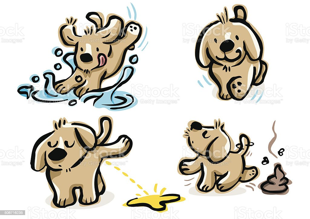 Puppy walking, doing pee, poop and jumping over a puddle vector art illustration