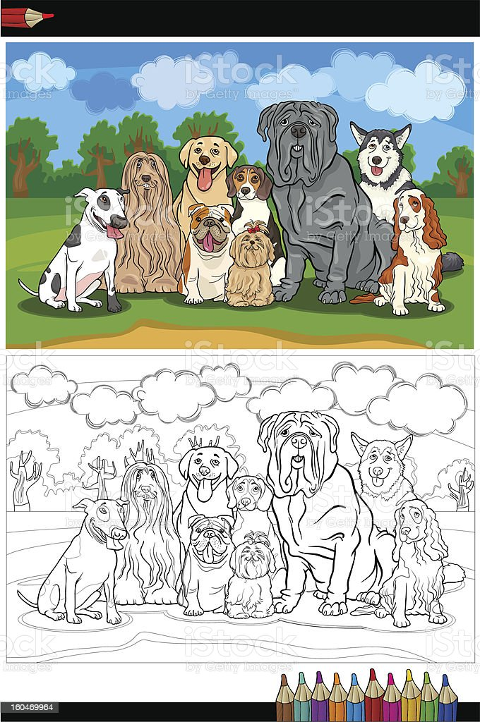 purebred dogs cartoon for coloring book royalty-free stock vector art