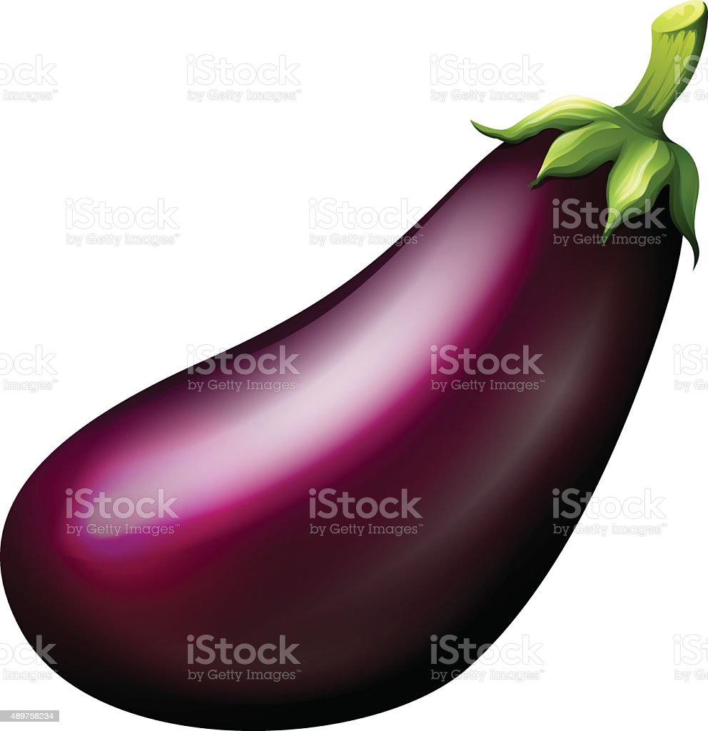 Purple eggplant on white vector art illustration