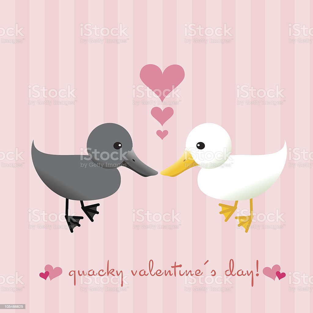 Quacky Valentine's Day vector art illustration