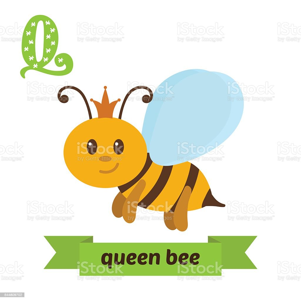 Queen bee. Q letter. Cute children animal alphabet in vector vector art illustration