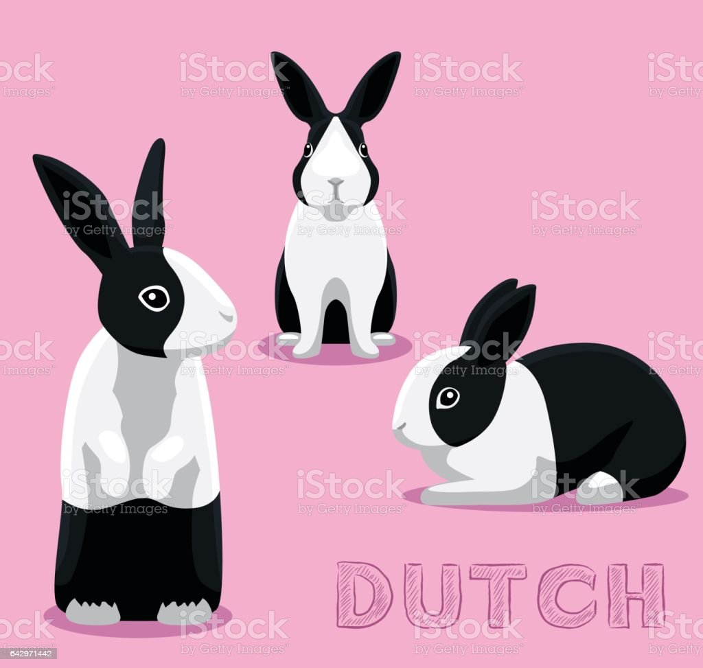 Rabbit Dutch Cartoon Vector Illustration vector art illustration