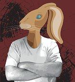 Rabbit in t-shirt