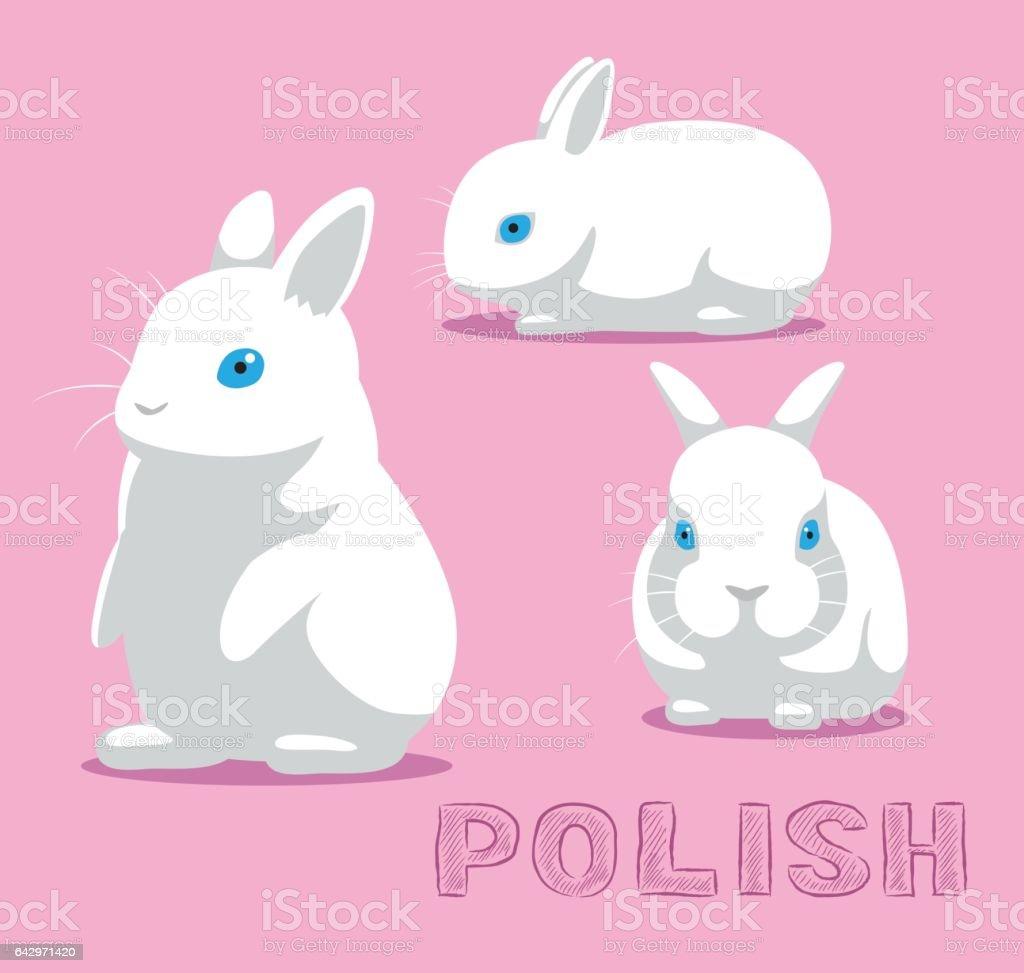 Rabbit Polish Cartoon Vector Illustration vector art illustration