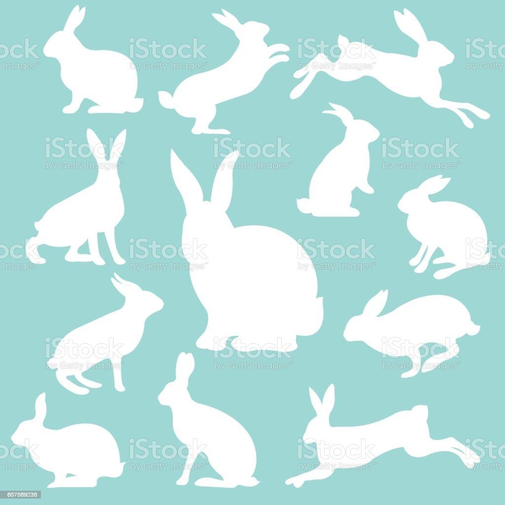 Rabbit Set vector art illustration