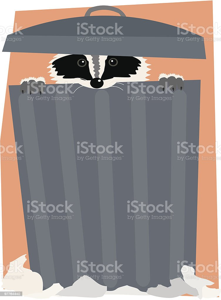 Raccoon in a Trash Can royalty-free stock vector art