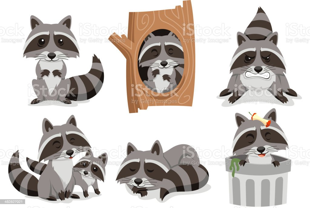 Raccoon Raccoons Set vector art illustration