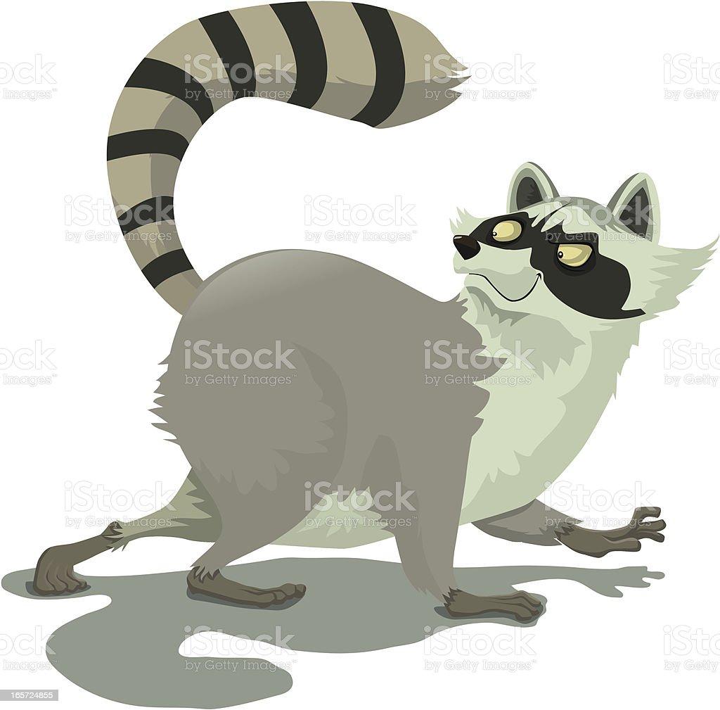 raccoon royalty-free stock vector art