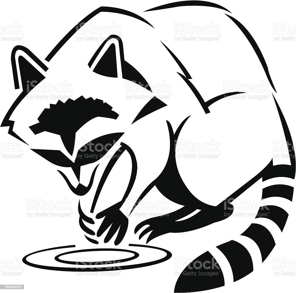 Raccoon stock vector art 165900302 | iStock Raccoon Drawing Easy