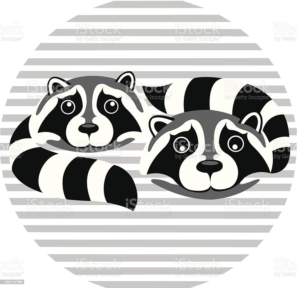 Raccoon vector art illustration