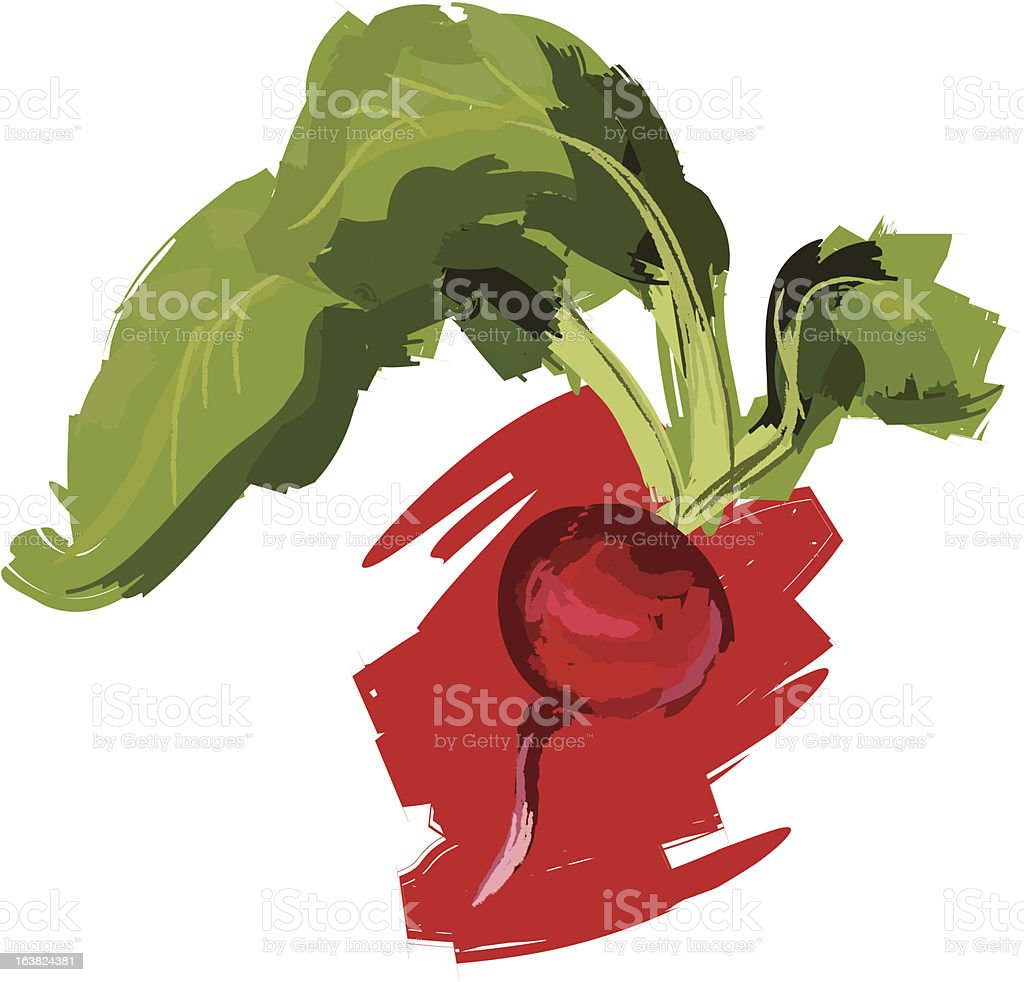 Radish royalty-free stock vector art