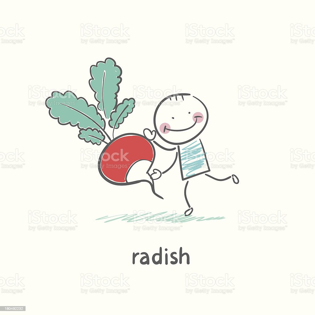 Radishes and people royalty-free stock vector art