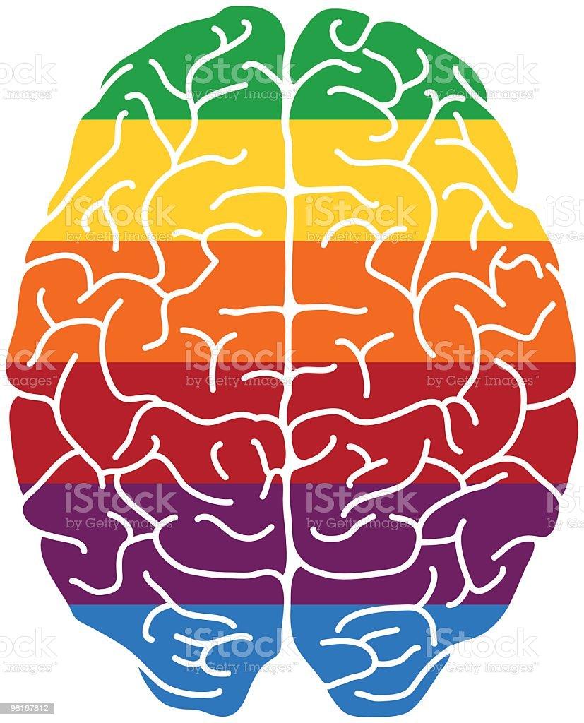 Rainbow brain royalty-free stock vector art