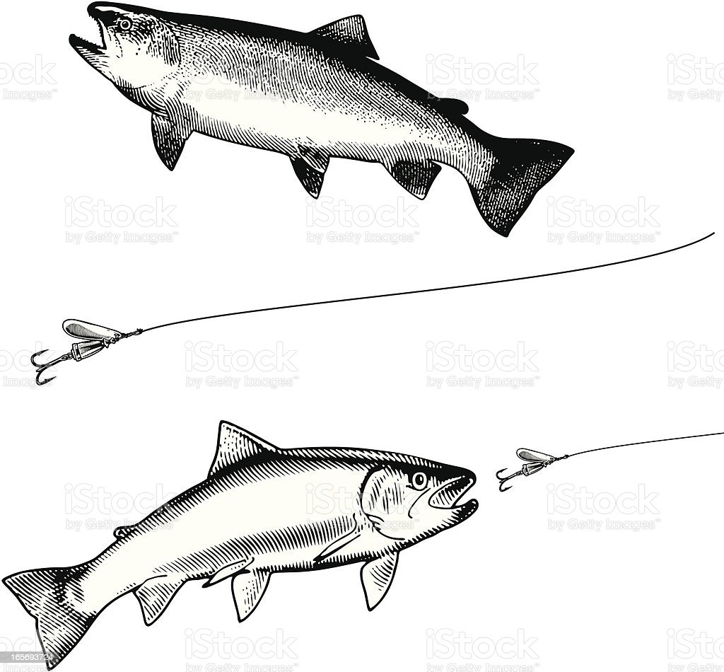 Rainbow Trout and Lure Black & White royalty-free stock vector art