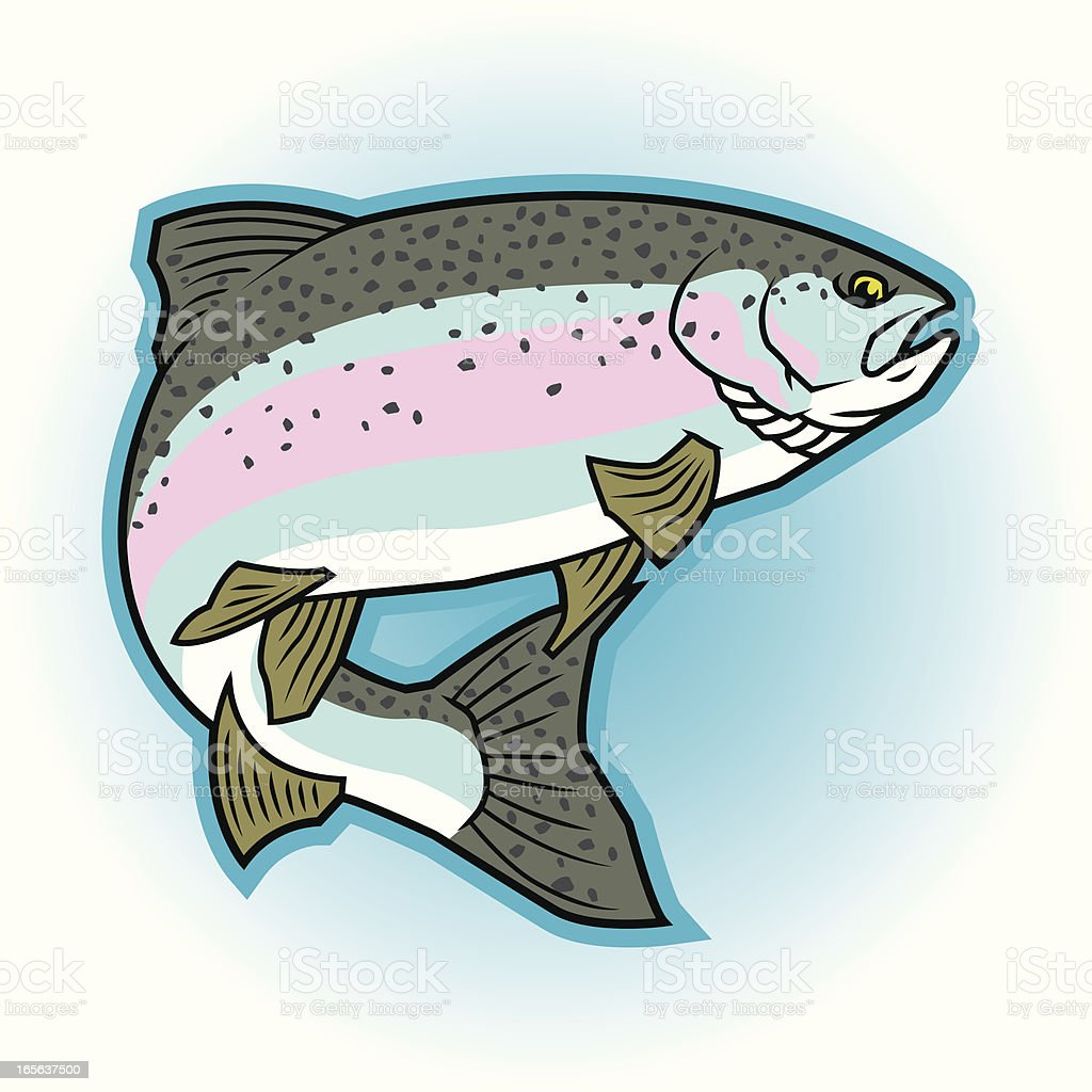 Rainbow Trout: Full Color royalty-free stock vector art