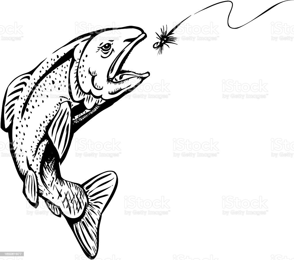 Rainbow Trout royalty-free stock vector art