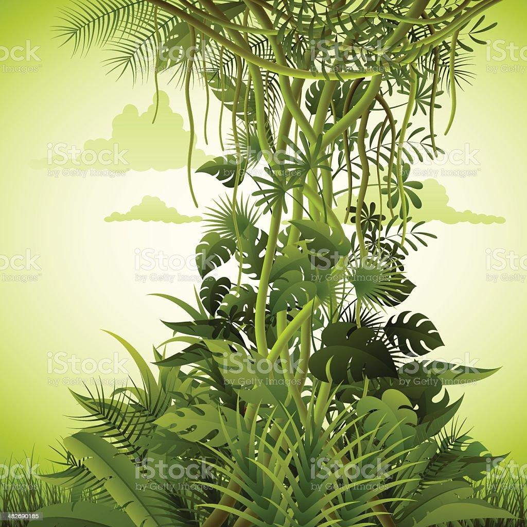 Rainforest Background vector art illustration