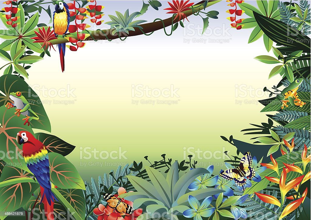 Rainforest Tropical Border vector art illustration