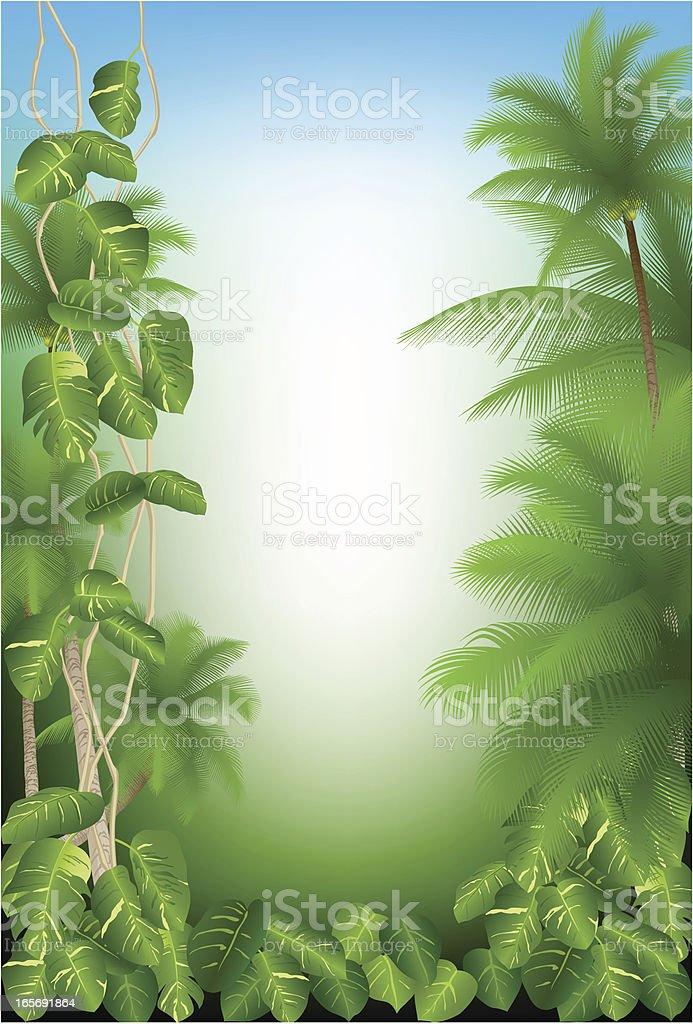 Rainforest royalty-free stock vector art