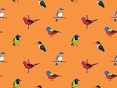 Random American Birds Wallpaper 2
