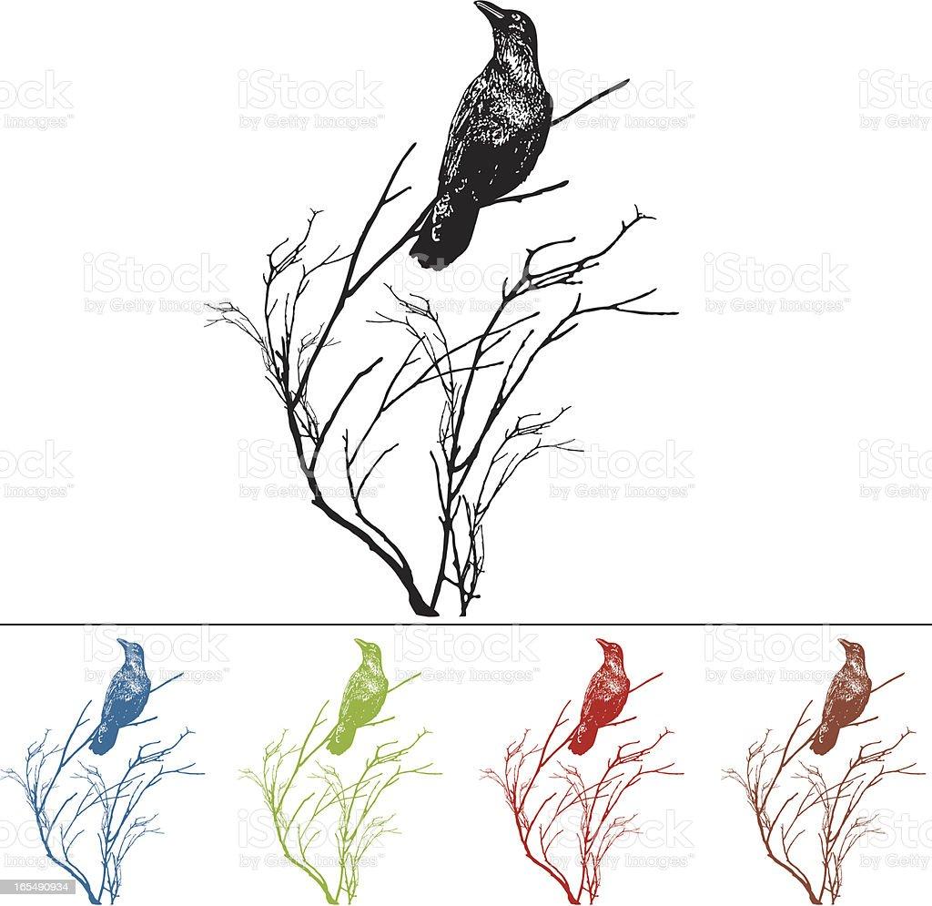Raven on a Branch Design Element vector art illustration