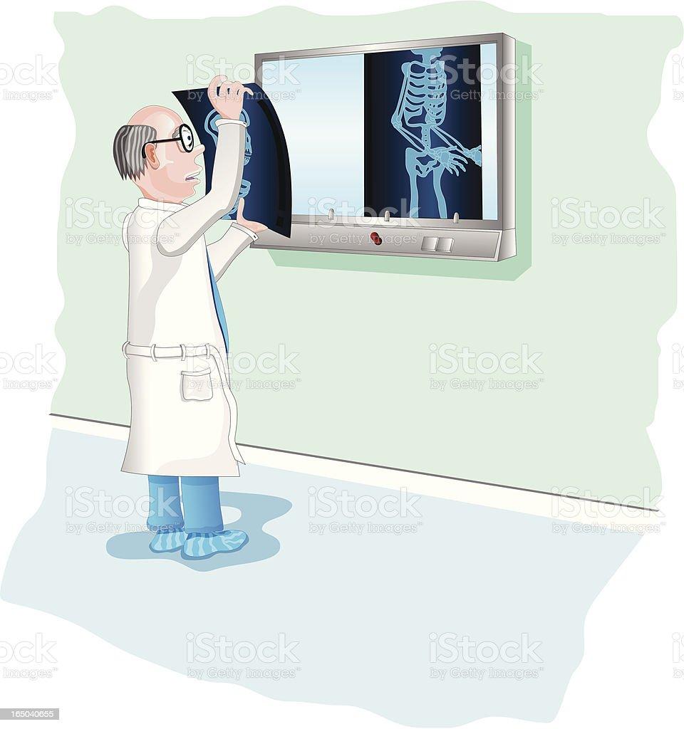 X Ray Doctor (Vector) royalty-free stock vector art