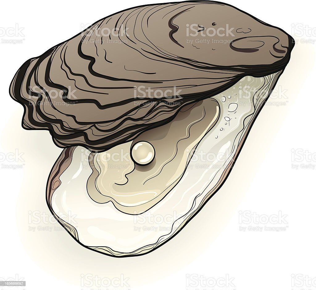 Real Oyster and Pearl royalty-free stock vector art