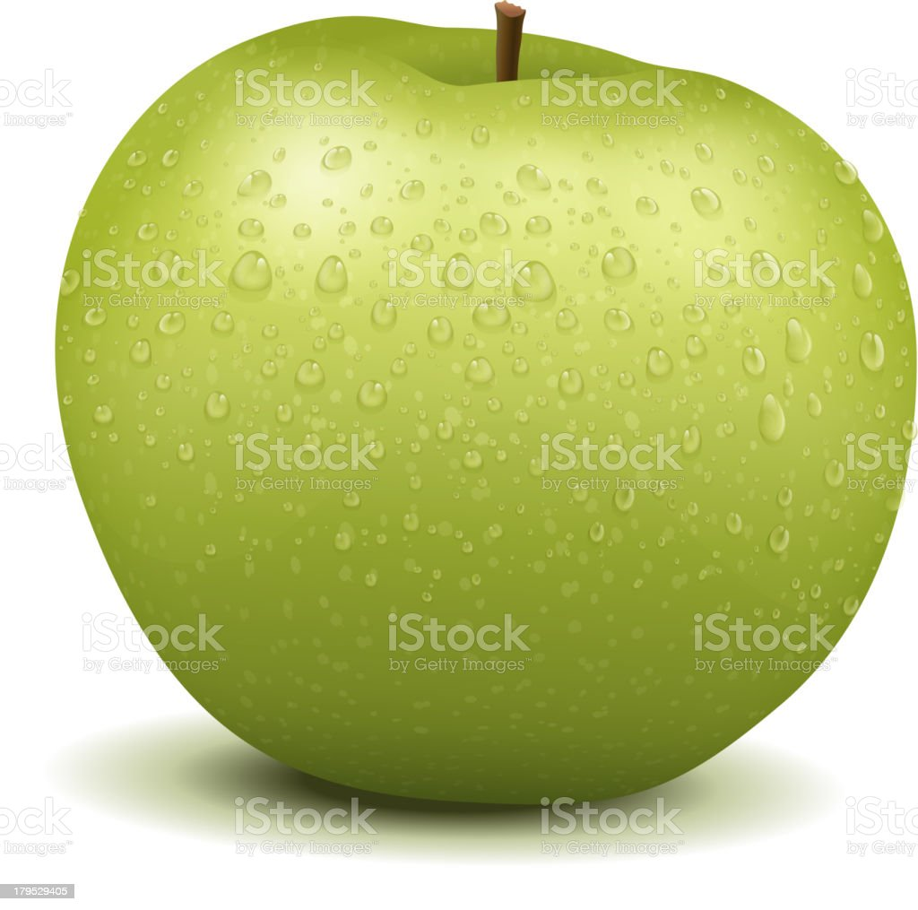 Realistic apple royalty-free stock vector art