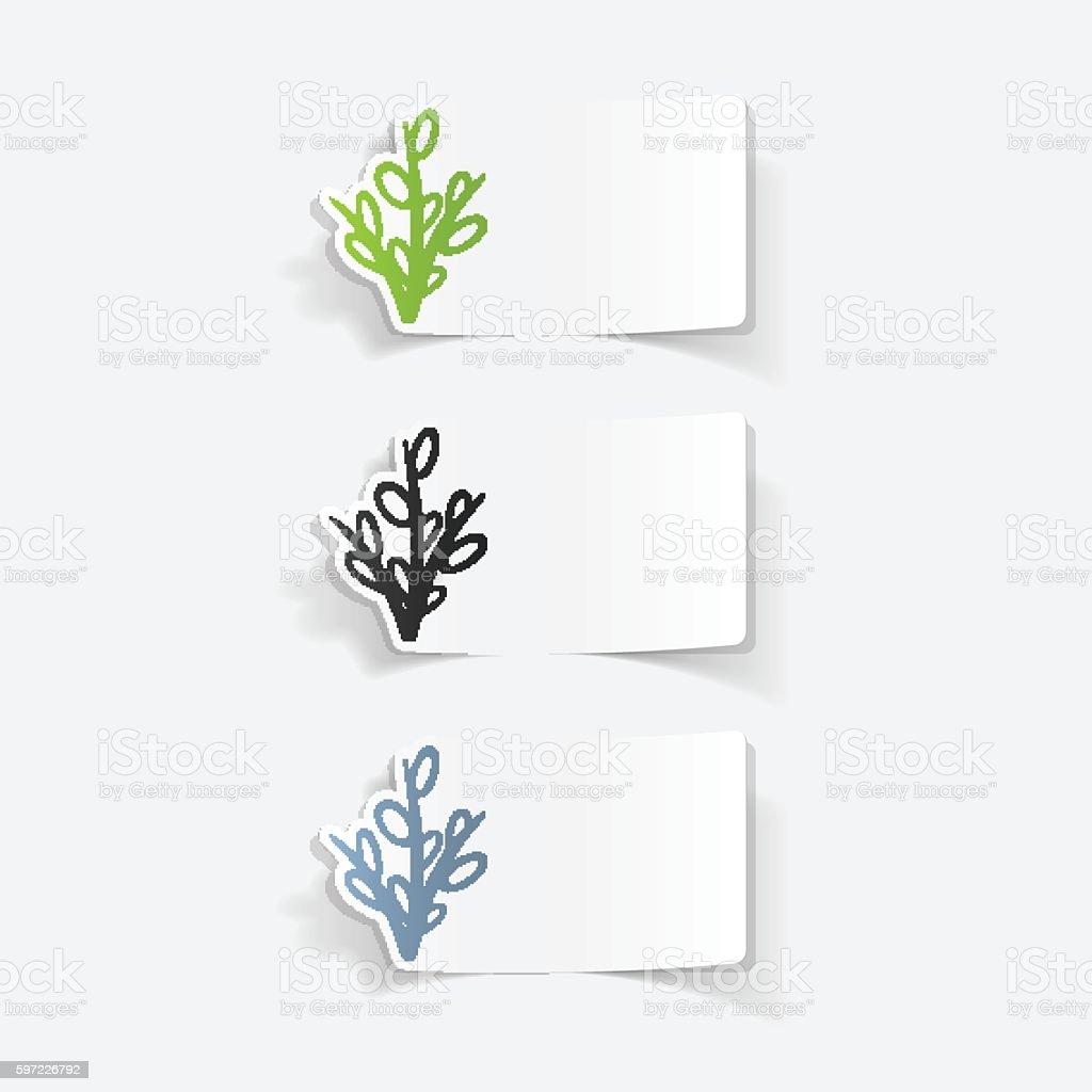 realistic design element: willow vector art illustration