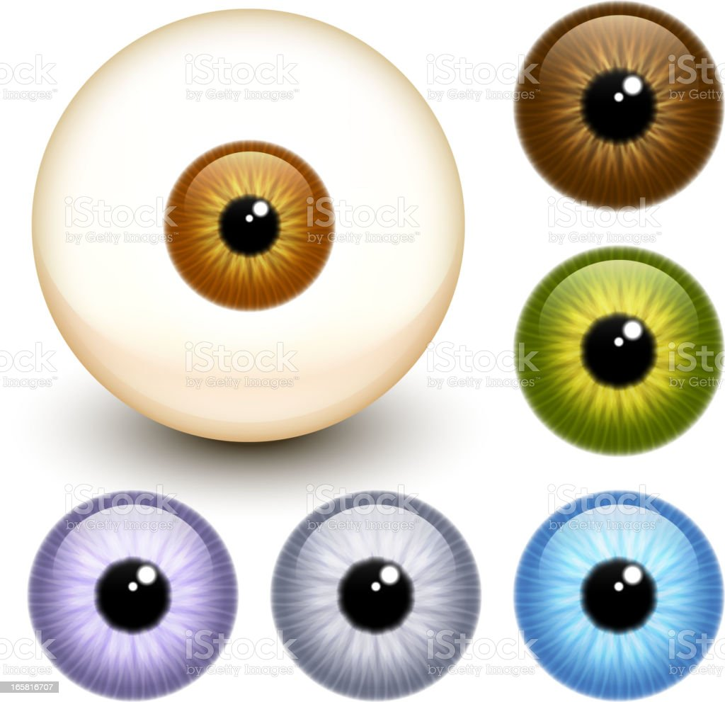 Realistic eye Eyeball Collection vector art illustration