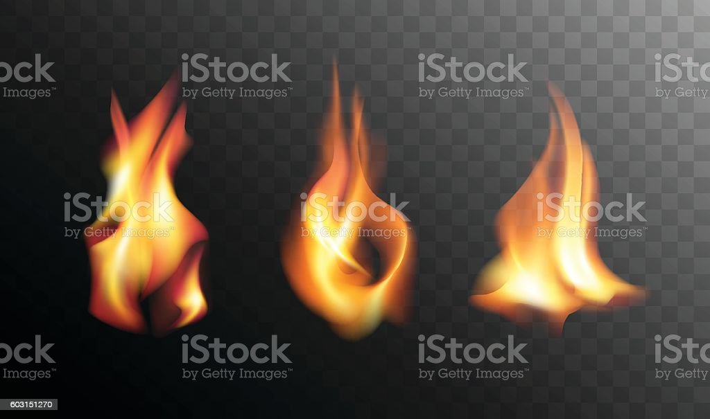 Realistic Fire Flames on a Transparent Background. vector art illustration