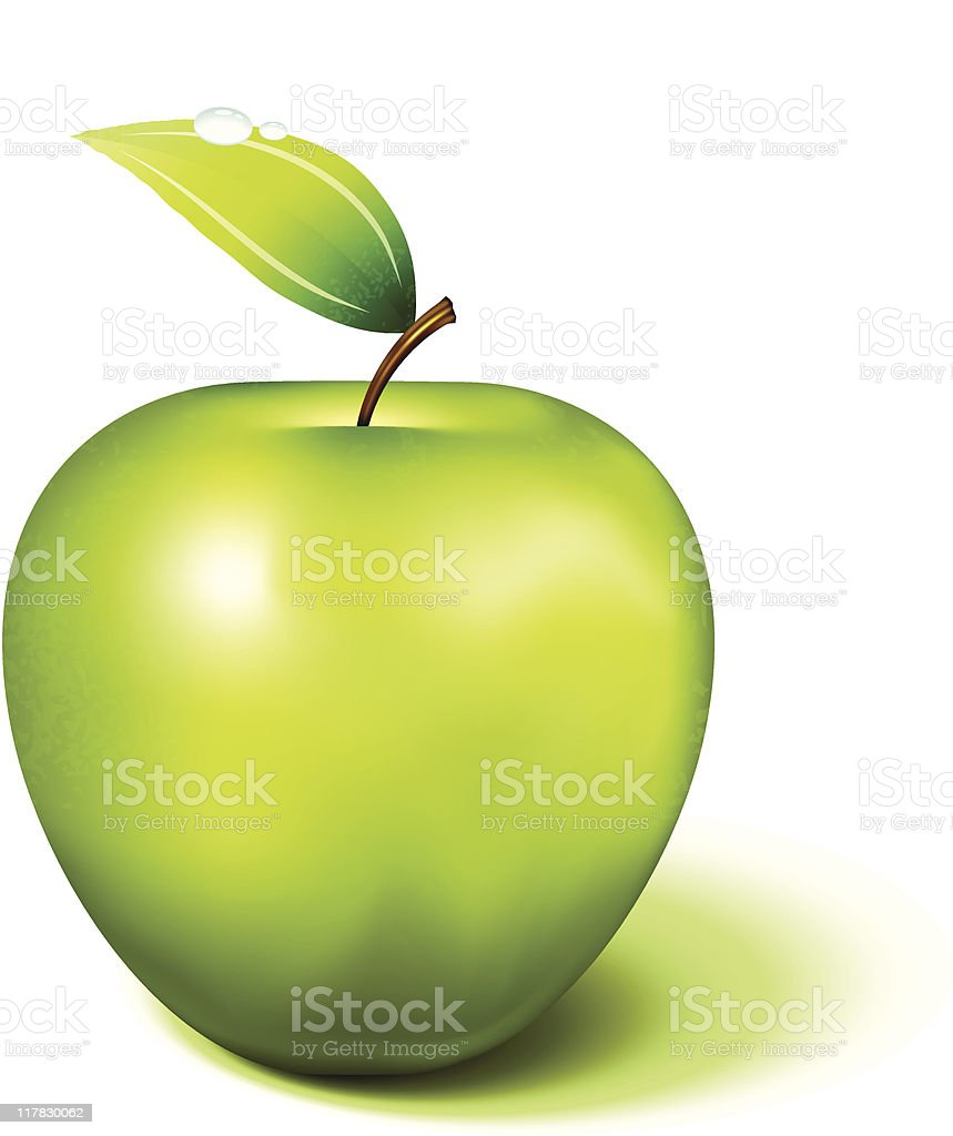 realistic Green Apple on white background vector art illustration