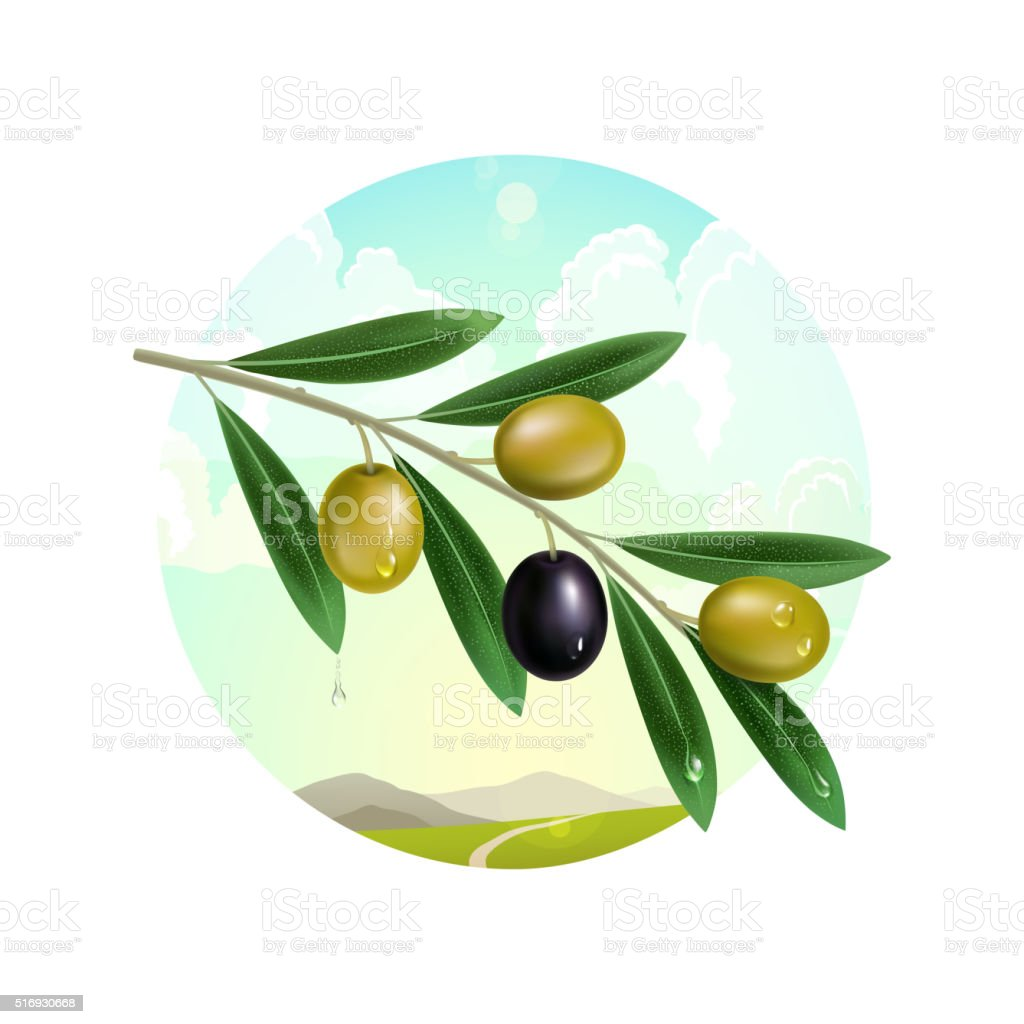 Realistic olive branch on the background of mountain landscape vector art illustration