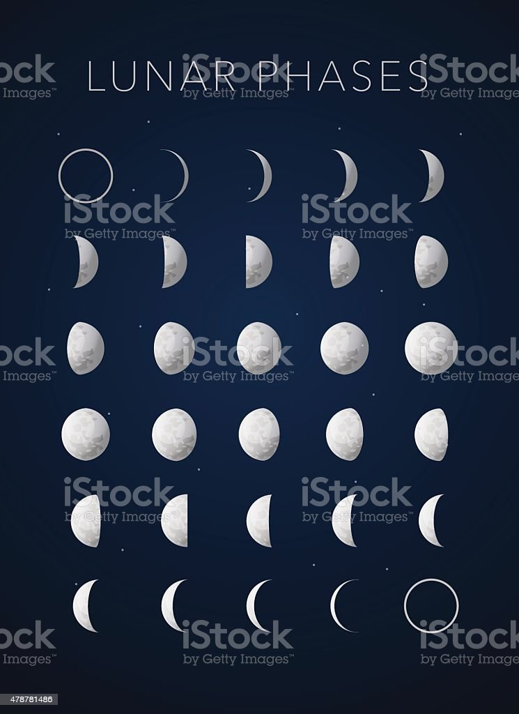 realistic textures Lunar phases, vector vector art illustration