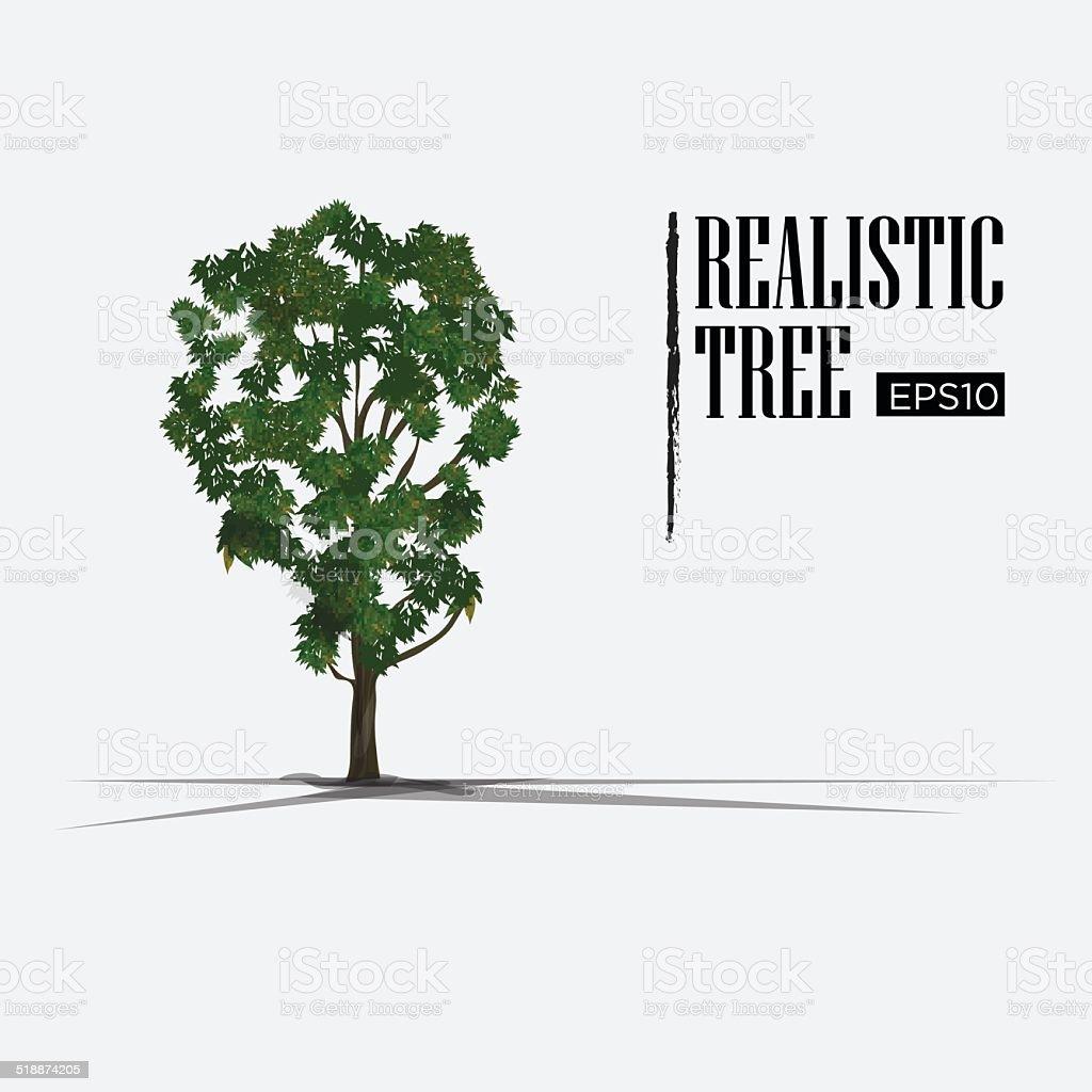 realistic tree - vector illustration vector art illustration