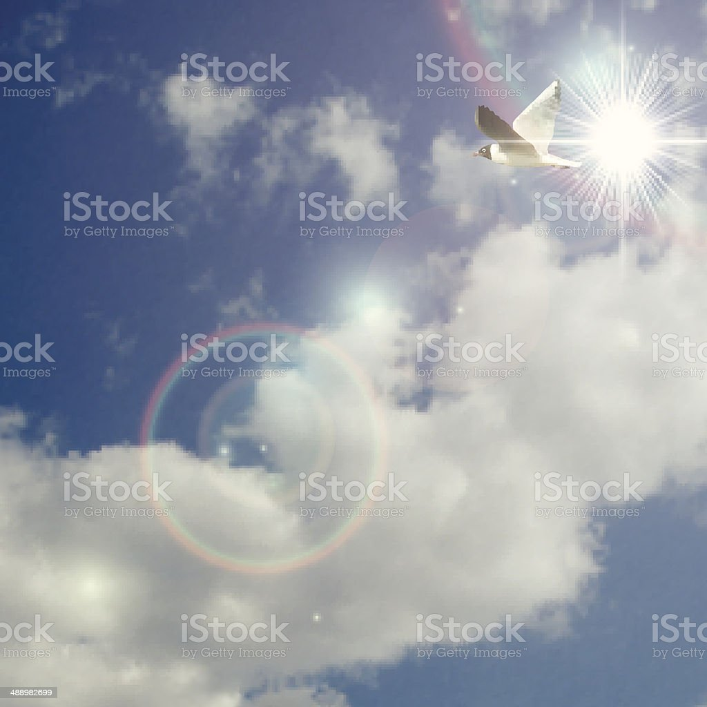 Realistic vector clouds and sky with flying bird seagull royalty-free stock vector art